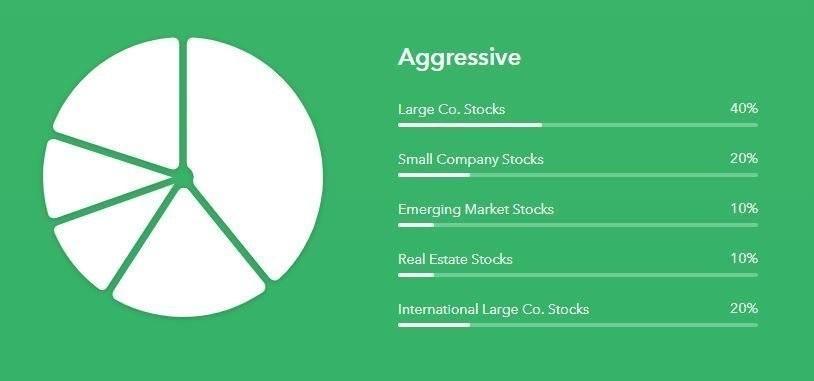 Acorns Aggressive