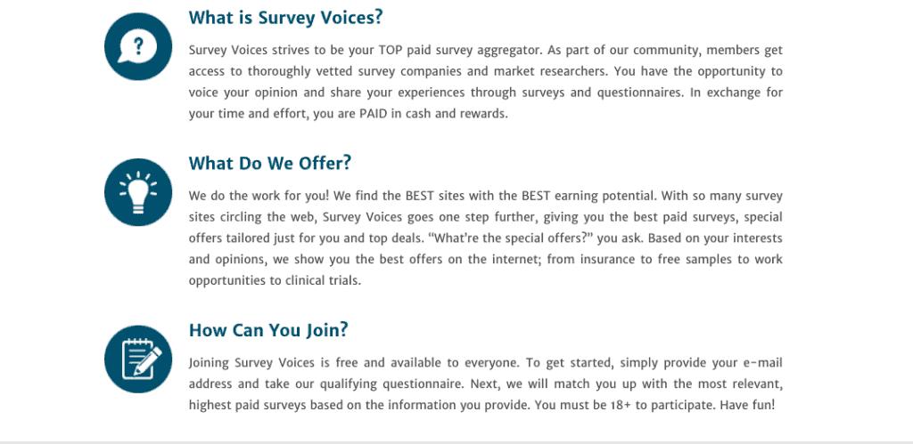 Survey Voices Review